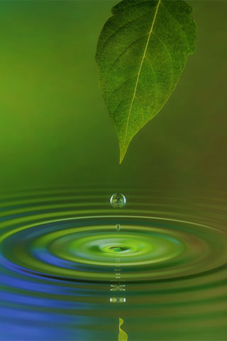 iPhone-Water-Leaf-background-iPhone-Wallpaper