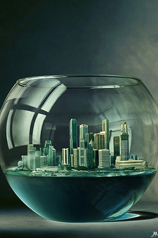 Water-Bowl-City