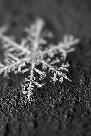3D-Wallpaper-Snowflake-Closeup