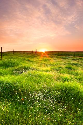 iPhone-Horizon-Sunrise-background-iPhone-Wallpaper