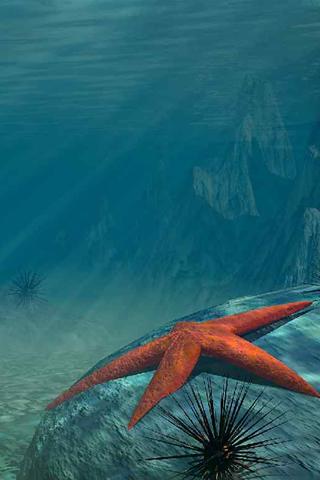 3D-Starfish