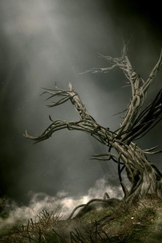 3D-Tree