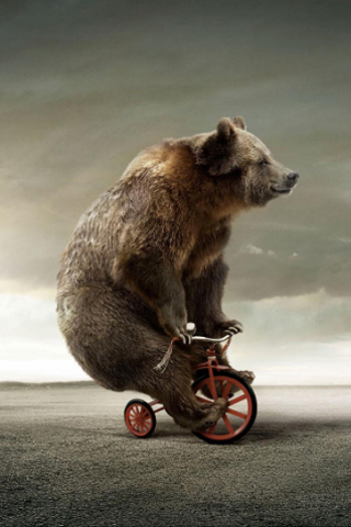 Circus-Bear-On-Tricycle