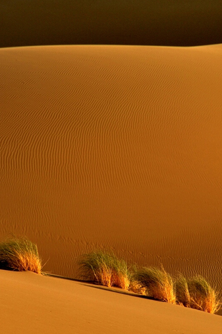 Sand-Dunes-by-Arash-Karimi