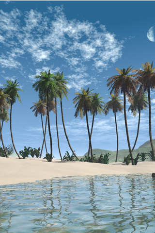 Palm-Beach-3D-iPhone-Wallpaper