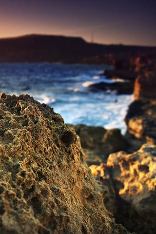 3D-Coral-Rock