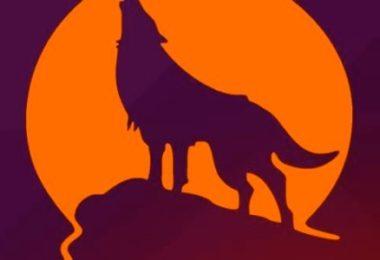 linux ubuntu 15.10-infoidevice