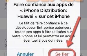 Etape 5 tuto installer emulateur nds4ios-infoidevice