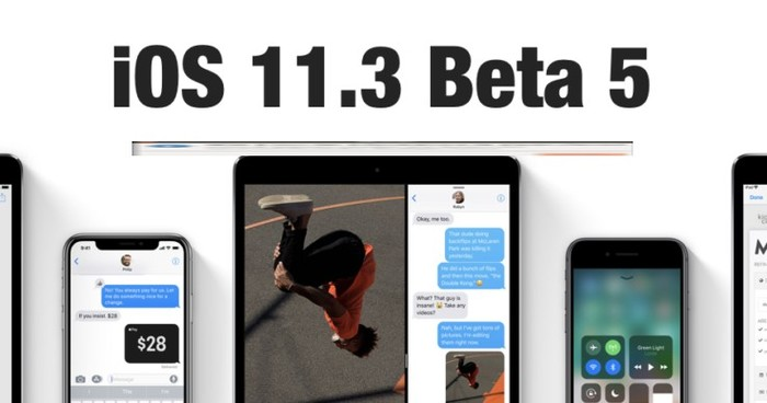 downgrade ios 11.3 beta 5