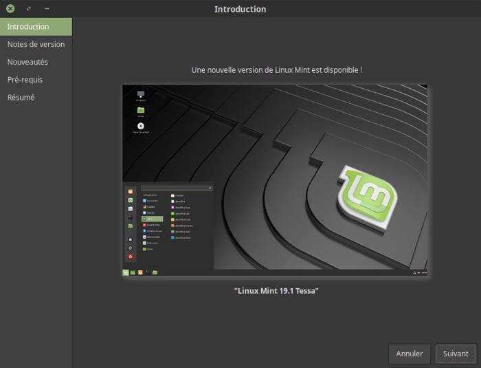 installer linux mint 19.1