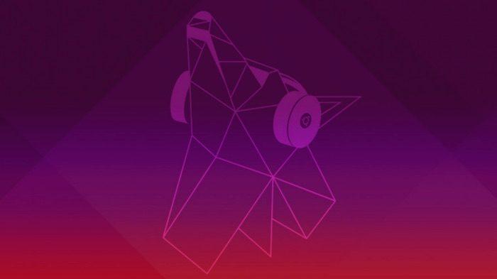 nouveau fond ecran ubuntu 19.04 disco dingo
