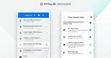 Navigateur Vivaldi 3.5